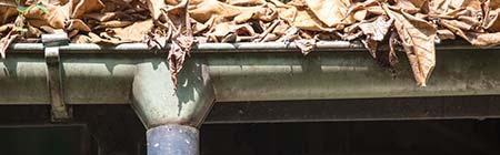regenpijp reparatie Vlissingen